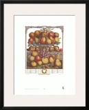 Twelve Months of Fruits, 1732, December Prints by Robert Furber