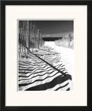 Shadowed Pathway Prints