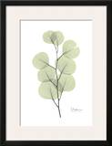 Eucalyptus in Pale Green Prints by Albert Koetsier
