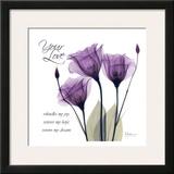 Your Love, Purple Tulip Posters by Albert Koetsier