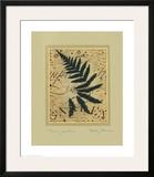 Fern Garden Print by Betsy Bauer