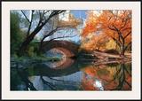 Gapstow Bridge, Fall Posters by Michael Chen