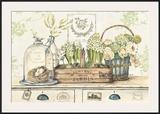 Dan mon Jardin Posters by Stefania Ferri