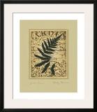 Garden Fern Prints by Betsy Bauer