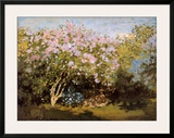 Blossoming Lilac in the Sun, c.1873 Posters by Claude Monet