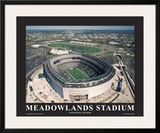 New York Giants at New Meadowlands Stadium Print by Mike Smith