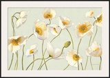 White and Bright Poppies Prints by Shirley Novak