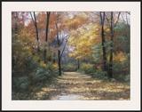 Autumn Road Prints by Diane Romanello