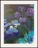 Water Lilies and Agapanthus Prints by Claude Monet