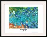 Irises, c.1889 Posters by Vincent van Gogh