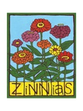 Zinnias, 2004 Giclee Print by Megan Moore
