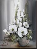 Univers d'Orchidees Blanches I Reproduction transférée sur toile par Olivier Tramoni