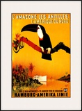 L'Amazone les Antilles Posters by Peter Fussey
