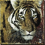 Tiger Portrait Stretched Canvas Print by Fabienne Arietti