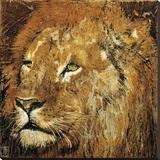 Lion Portrait Stretched Canvas Print by Fabienne Arietti