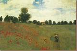 Vallmor Sträckt Canvastryck av Claude Monet