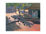 Hens and Chickens, Cuba, 1997 Giclee Print by Andrew Macara