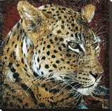 Leopard Portrait Stretched Canvas Print by Fabienne Arietti