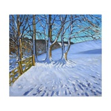 Gate and Trees,Winter, Dam Lane, Derbyshire, 2013 Giclee Print by Andrew Macara