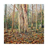 Winter Trunk, 2010 Giclee Print by Noel Paine