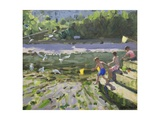 Kids and Seagulls, Looe , 2013 Giclee Print by Andrew Macara
