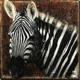 Zebra Portrait Stretched Canvas Print by Fabienne Arietti