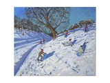 Bright Morning, Chatsworth, 2013 Reproduction procédé giclée par Andrew Macara