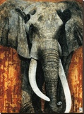Elephant Stretched Canvas Print by Fabienne Arietti