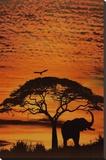 Céus Africanos Impressão em tela esticada