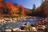 Autumn Brook - Şasili Gerilmiş Tuvale Reprodüksiyon