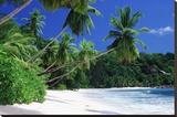 Mahe Island, Seychelles Stretched Canvas Print by José Fuste Raga