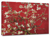 Almond Blossom (Red) Stretched Canvas Print by Vincent van Gogh