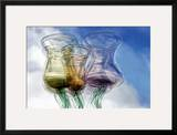 Cheers! Framed Photographic Print by Ursula Abresch