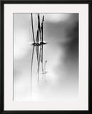 Silence Framed Giclee Print by Ursula Abresch