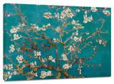 Almendros en flor Reproducción en lienzo de la lámina por Vincent van Gogh