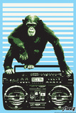 Monkey Boom Box Plastic Sign by  Steez