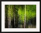 Matrix Framed Giclee Print by Ursula Abresch