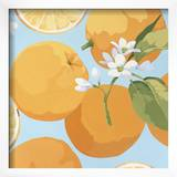Fresh Oranges Framed Giclee Print by Martha Negley