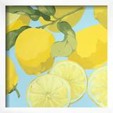 Fresh Lemons Framed Giclee Print by Martha Negley