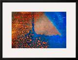 Caribbean Islands Framed Photographic Print by Ursula Abresch