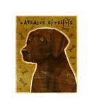 Chocolate Lab Giclee Print by John Golden