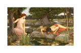 Echo et Narcisse, 1903 Reproduction procédé giclée par J.W. Waterhouse
