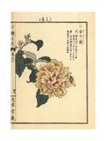 Gold Sweet Osmanthus, Osmanthus Fragrans Var Aurantiacus Giclee Print by Bairei Kono