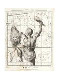 Astronomical Chart of the Constellation of Orion Giclee Print by L. Hebert