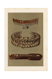 Thai Harmonicons: Ranat Ek and Khong Yai (Xylophones) and Ta'Khay Giclee Print by Alfred James Hipkins