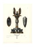 Pedestal Giclee Print by Jakob Heinrich Hefner-Alteneck