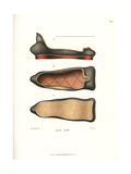 Right Shoe from a Pair Made for HRE Matthias II, 16th Century Giclee Print by Jakob Heinrich Hefner-Alteneck