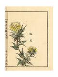 Safflower, Carthamus Tinctorius Giclee Print by Bairei Kono
