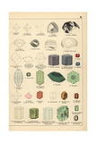 Precious Stones Including Diamond, Ruby, Sapphire, and Emerald - Giclee Baskı