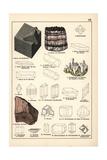 Mineral Varieties Including Fluorite, Celestine and Rock Salt Giclee Print